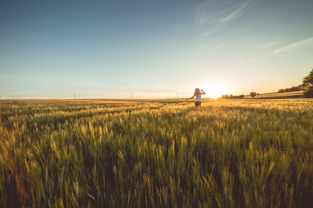 young-woman-running-through-wheat-field-on-sunset-picjumbo-com.jpg